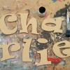 Ravie Funky MDF unpainted letters