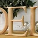 Elegant Carved NOEL Christmas Letters
