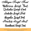 Choice of Script Lettering Styles
